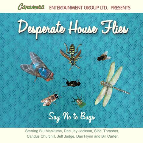 desperate_house_flies