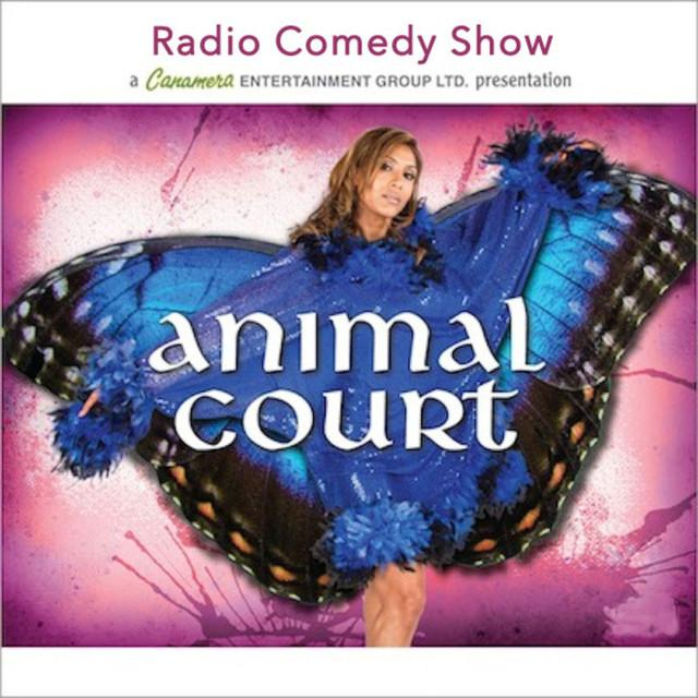 animal-court-cover